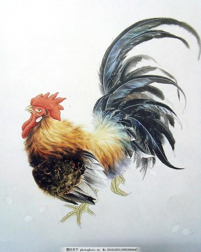 国画公鸡 国画公鸡图片素材 水墨画 名画 花鸟画 国画动物 中国画
