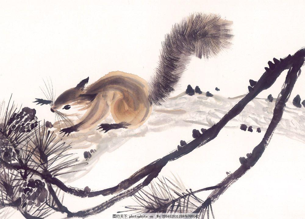 手绘松鼠素材 手绘松鼠素材图片素材 国画 油画 装饰画 插画 彩绘