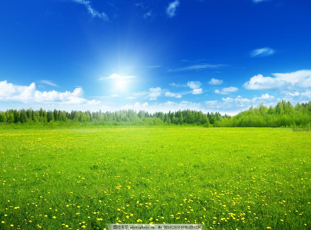 蓝天白云下的草原风景图片素材 草原 草地 绿地 蓝天白云 草原美景