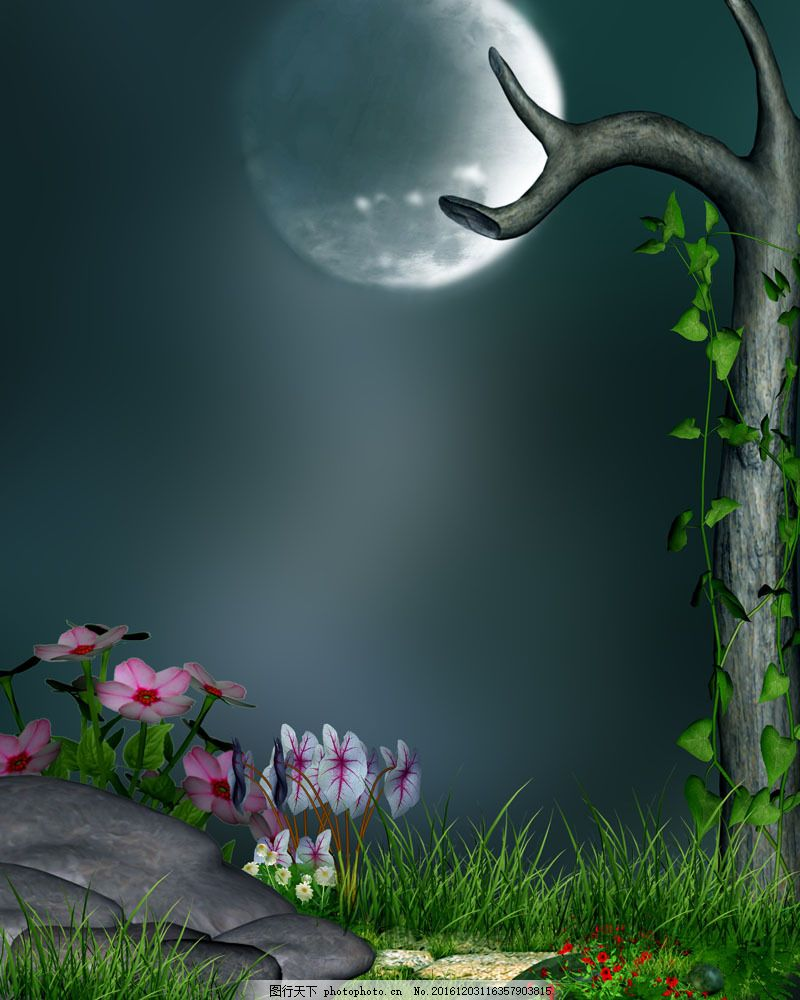 美丽鲜花与月亮风景图片
