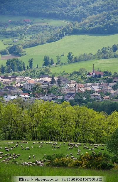 乡村小镇的远景图 春天 农村 牧场 村庄 málinec 山坡 绿色 羊群