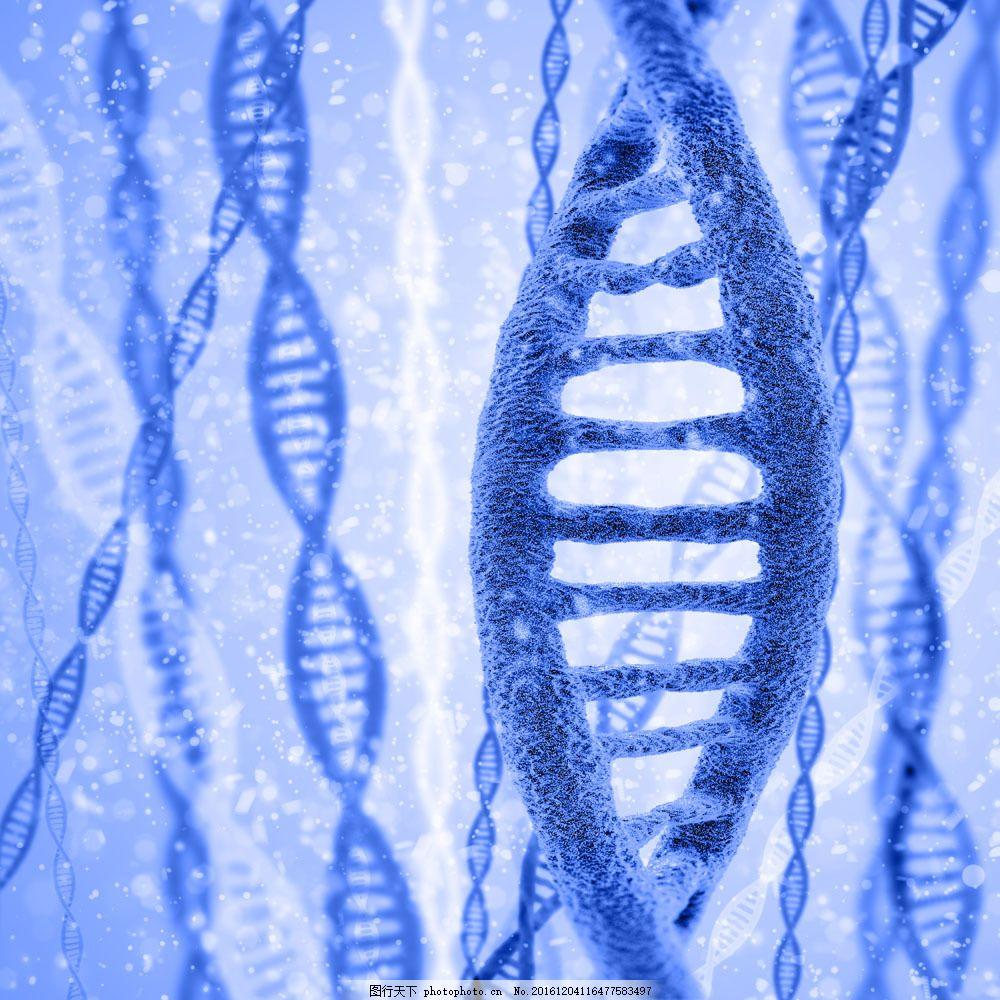 显微镜下的dna结构图片