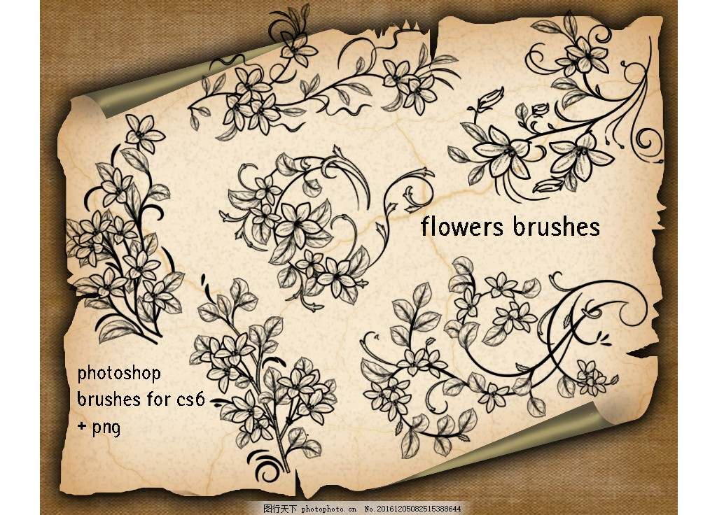 手绘花朵花枝藤蔓ps笔刷