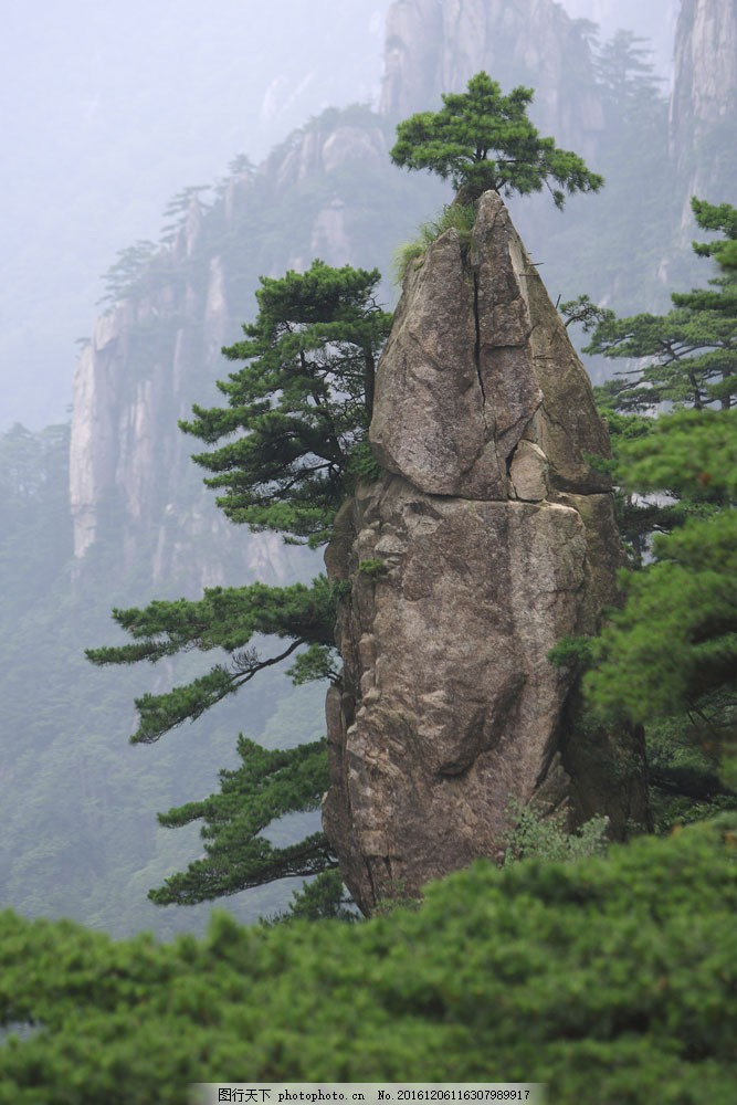 黄山 安徽省 山峰 石头 松树 风景 景色 美景 摄影图 旅游 旅游景点