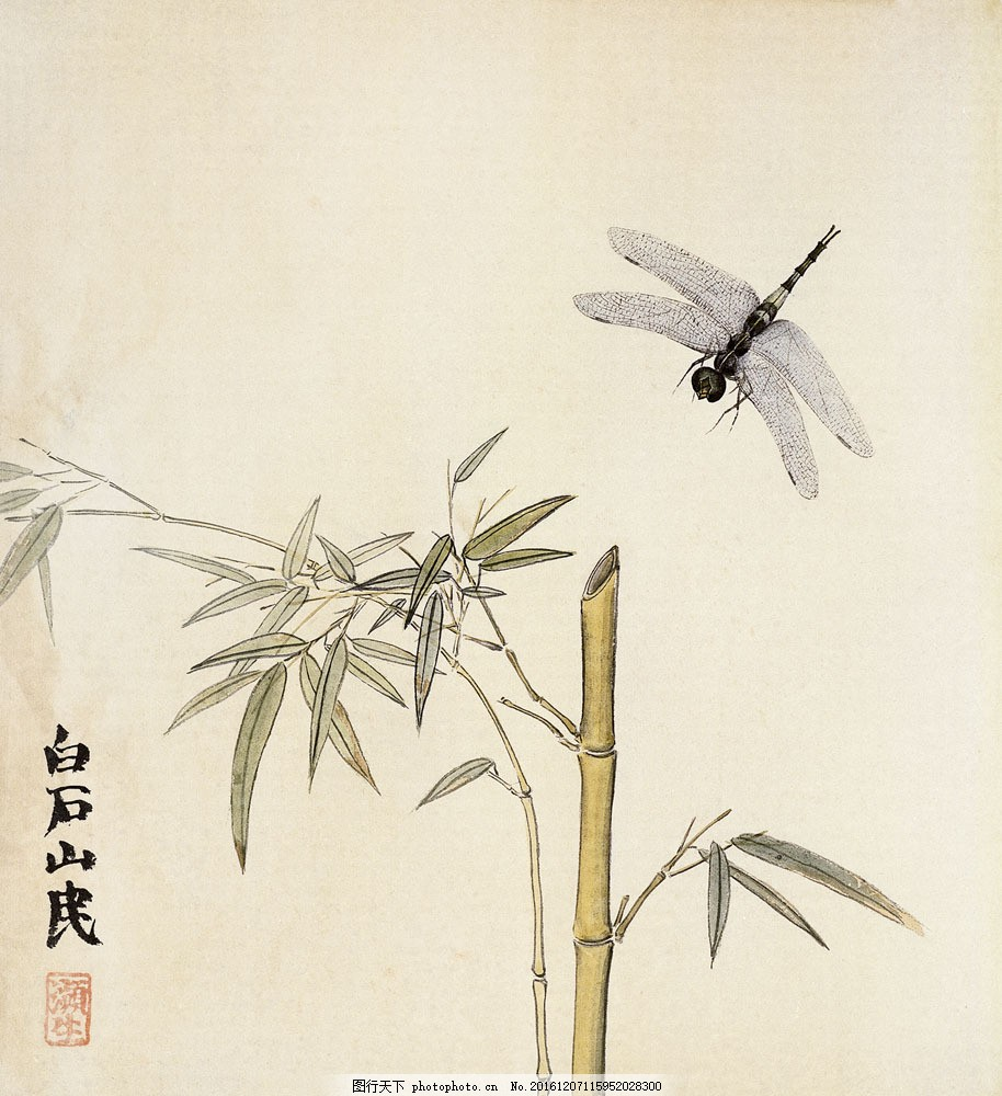 国画竹子与蜻蜓 国画竹子与蜻蜓图片素材 印章 中国画 水墨画 书画