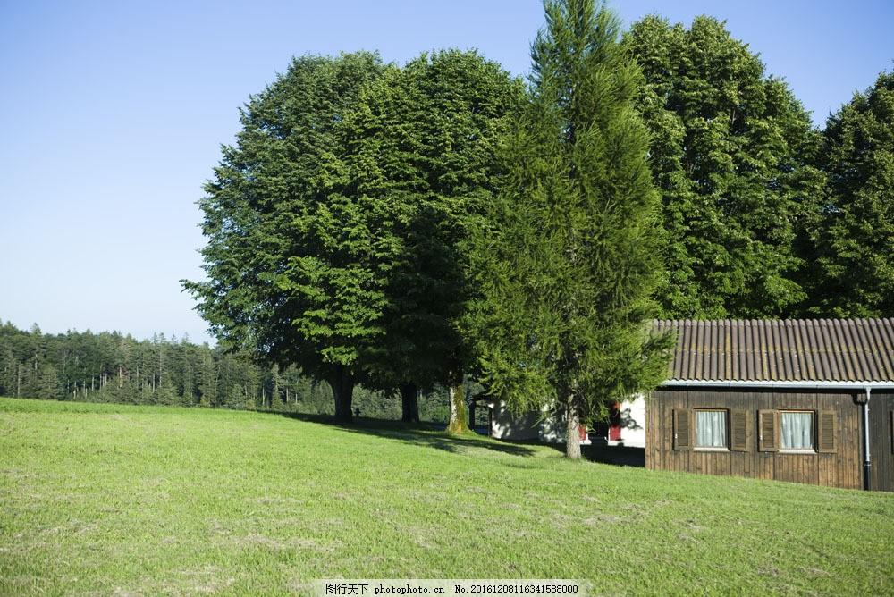 草原房子与树木图片,草原房子与树木图片素材 天空