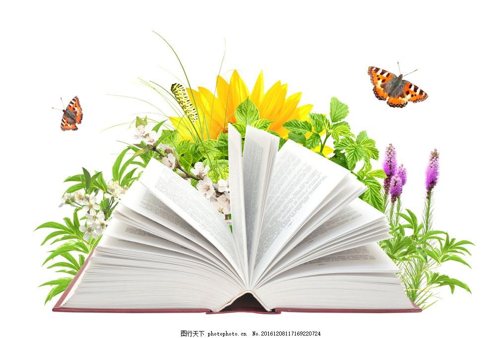 书本与鲜花蝴蝶图片图片
