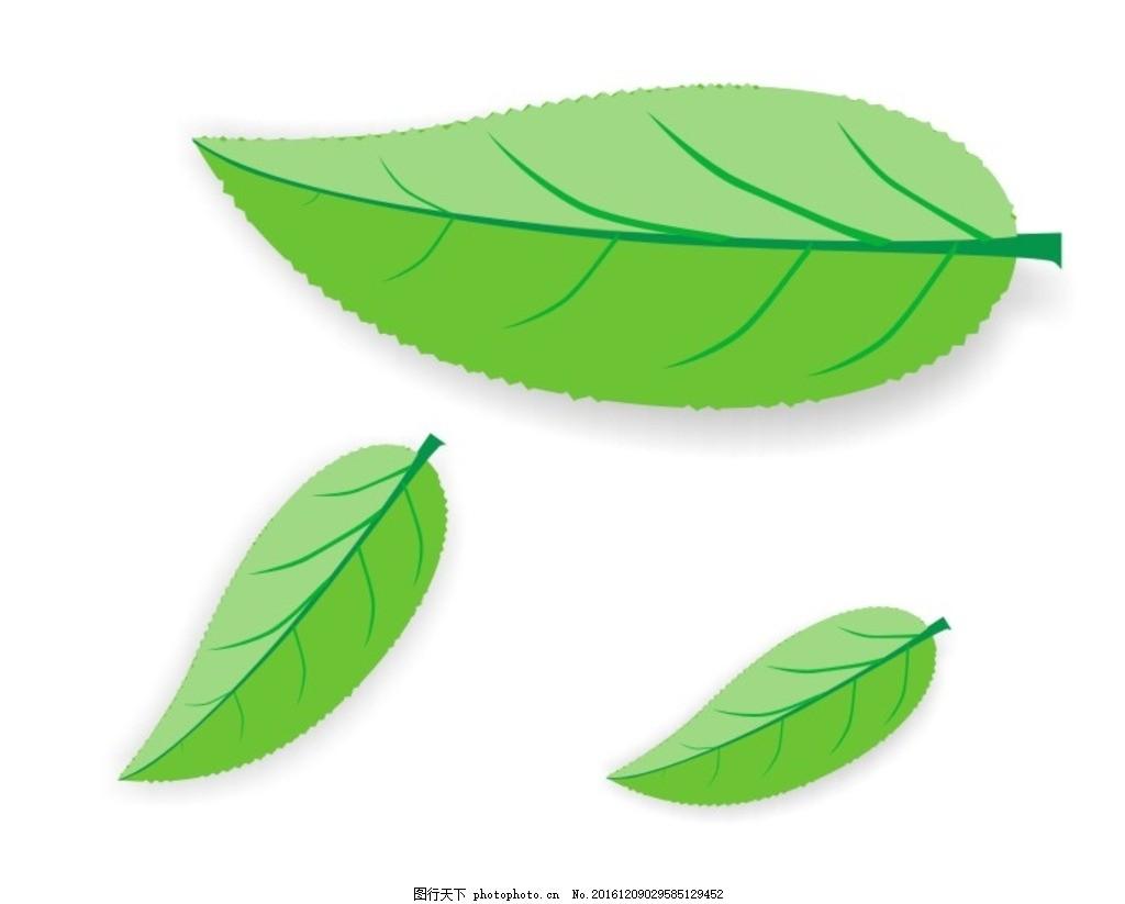 树叶 叶子 绿叶 绿色 树叶矢量图 设计 广告设计 广告设计 cdr