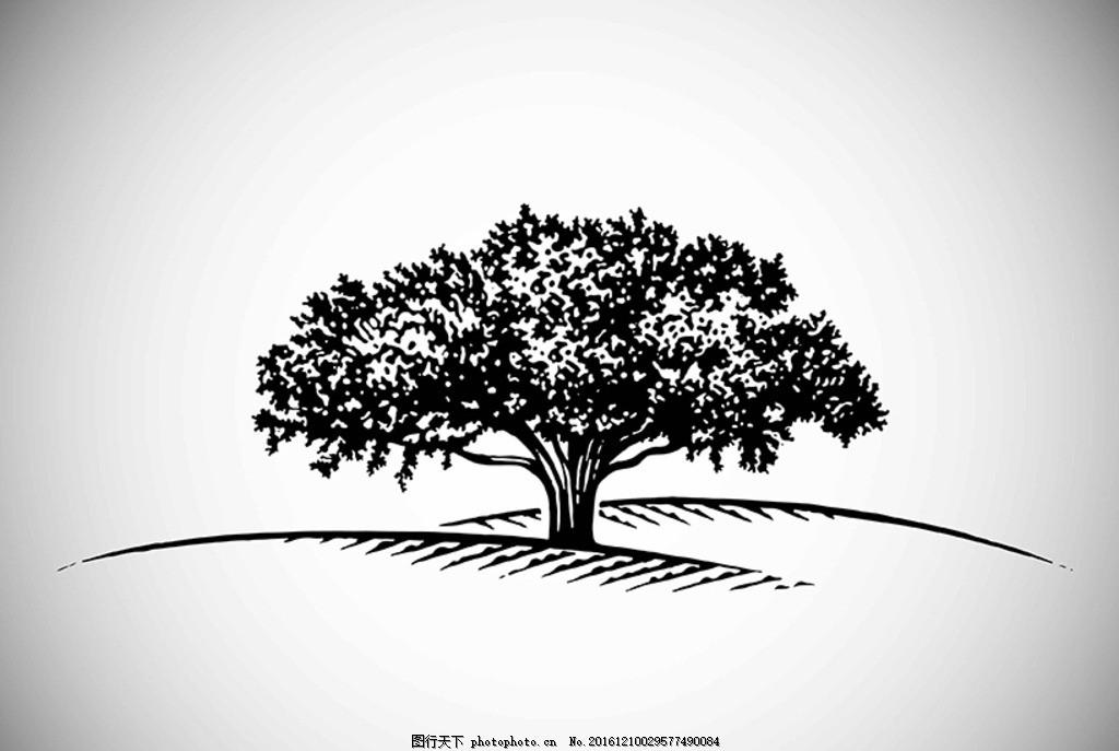 树 黑白画 矢量 植物 树木 大树 松树 黑白植物 插画 背景 海报 画册