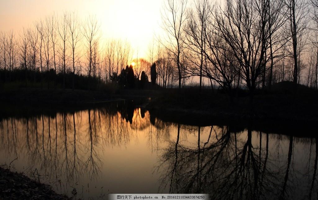 树木水中倒影 冬天河流 夕阳倒影 树木倒影 夕阳美景 黄昏美景