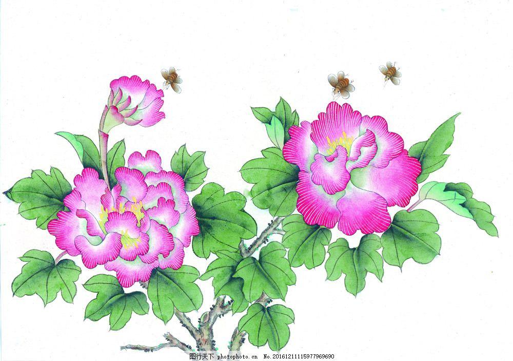 工笔画花与蜜蜂 工笔画花与蜜蜂图片素材 水墨画 水墨花卉 花鸟画