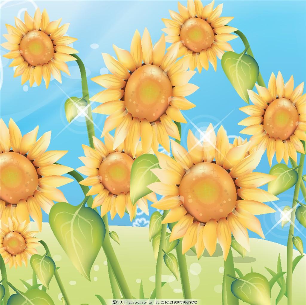 植物图案 位图 写意花卉 花朵 花朵图片 向日葵 太阳花 花朵图案 装饰