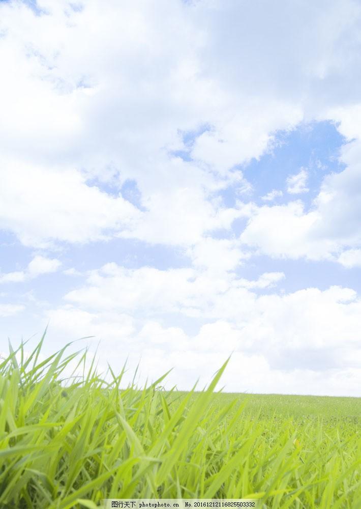 大自然风景摄影图片图片素材 草原风光 草原 蓝天 白云 湿地 自然风景 自然景观 摄影 高清图片 图片素材 草地 绿色 JPG图片 草原主题 大自然 春天 生机盎然 碧绿的草地 风景图片 风景画 草坪 花草树木 生物世界 图片素材
