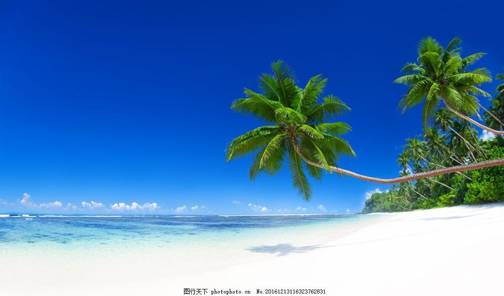 蓝天 白云 沙滩 大海 海浪 浪花 椰子树 树 绿色植物 大海图片 风景