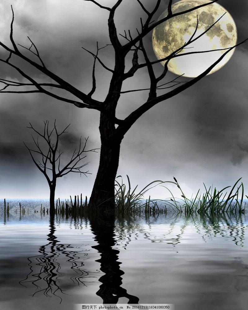 月色风景图片素材 风景 夜景 月色风景 黑暗 诡异 湖边 倒影 月亮