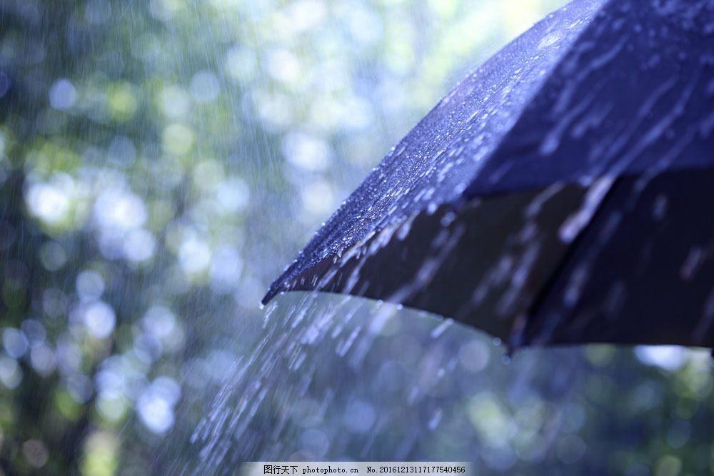 雨中的黑色伞 雨中的黑色伞图片素材 打伞 大雨 下雨 雨天 雨滴