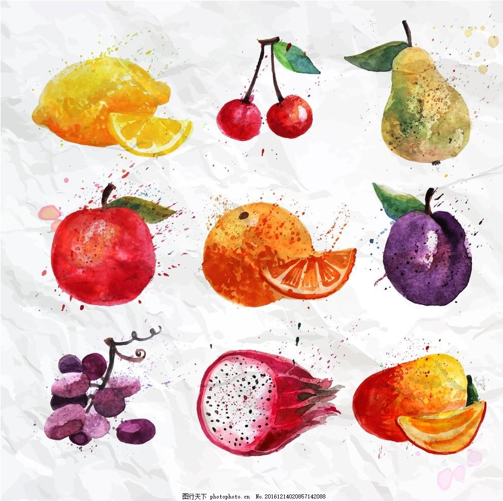 手绘水果 水彩