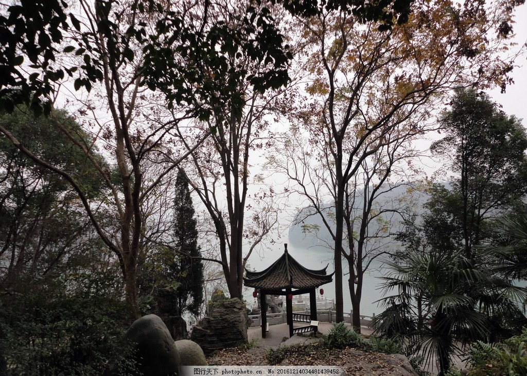 三游洞风景,三游洞风景区 八角亭 亭子 树林 冬景-图