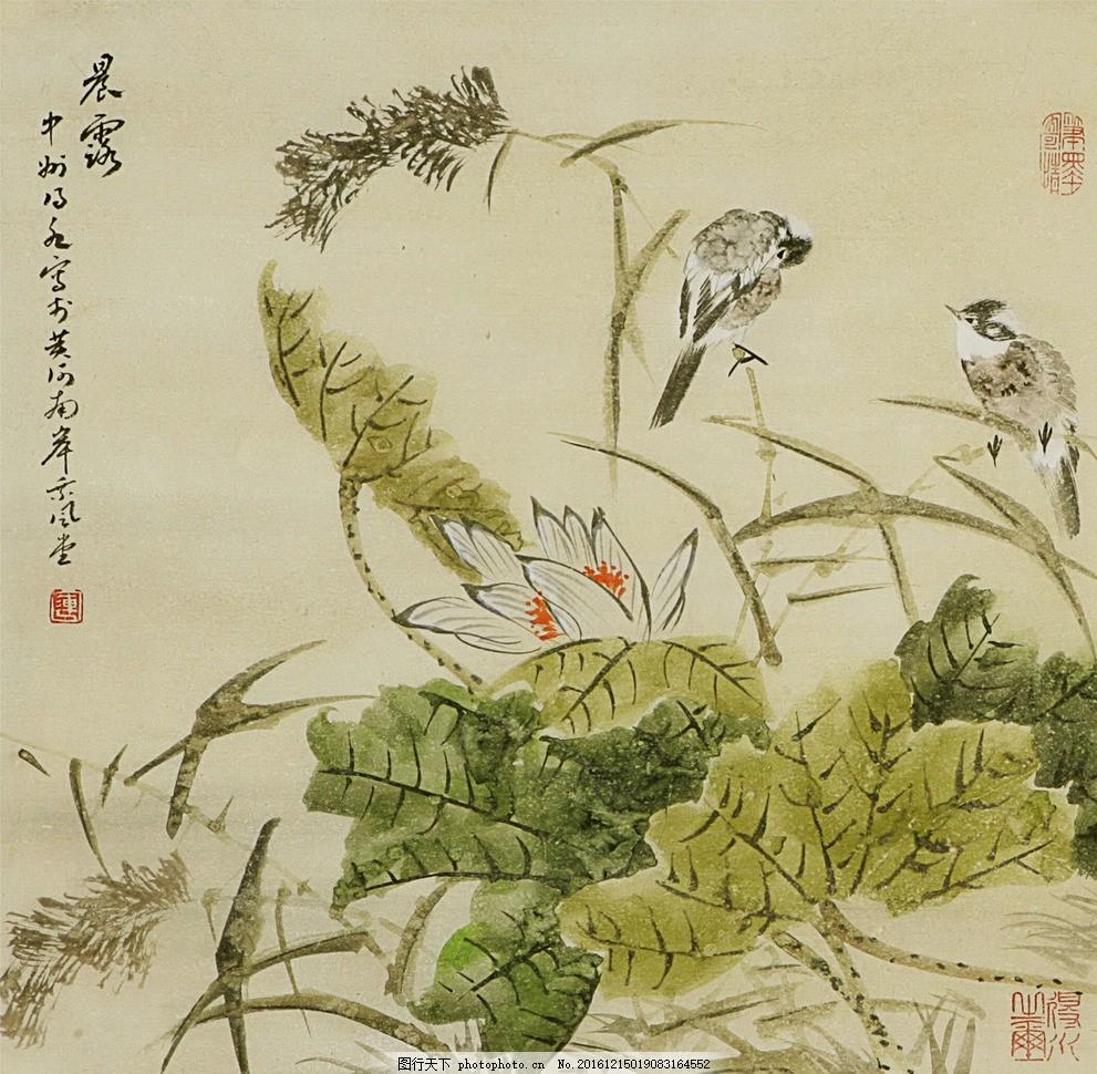 荷花 荷叶 芦苇 鸟 工笔画