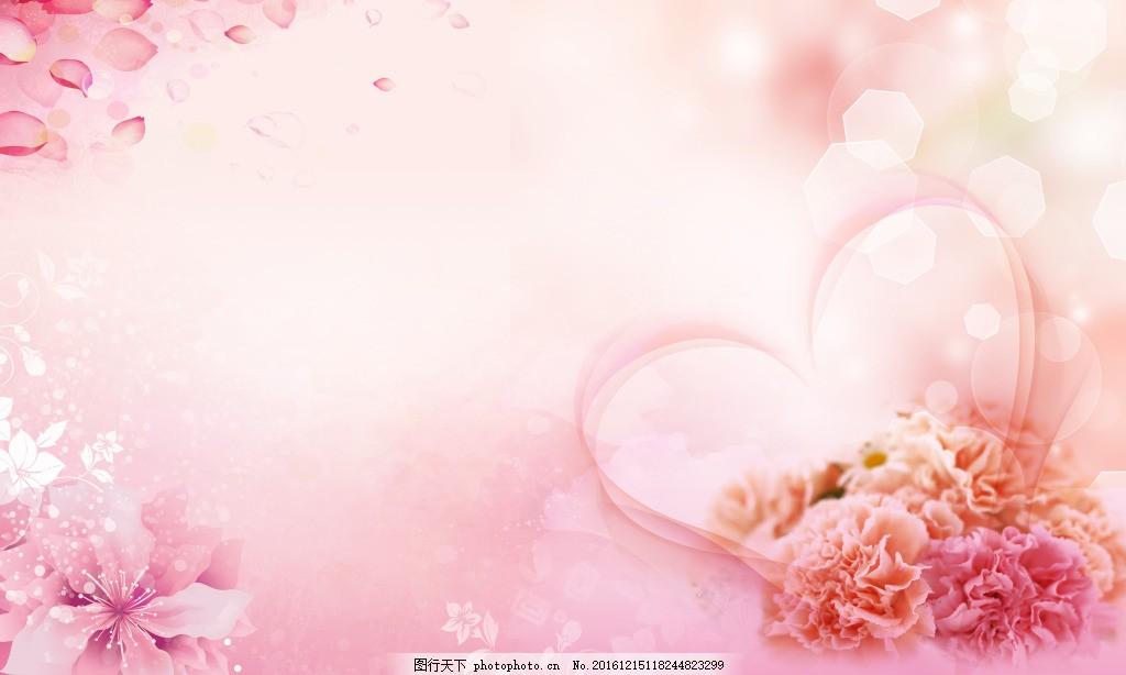 花 康乃馨花