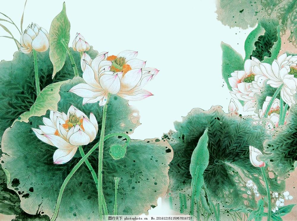 莲花国画 莲花国画图片素材 水墨画 中国画 中国艺术 绘画艺术