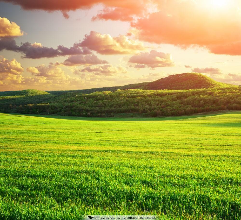 设计图库 高清素材 自然风景  春天草原风景图片素材 春天草原风景