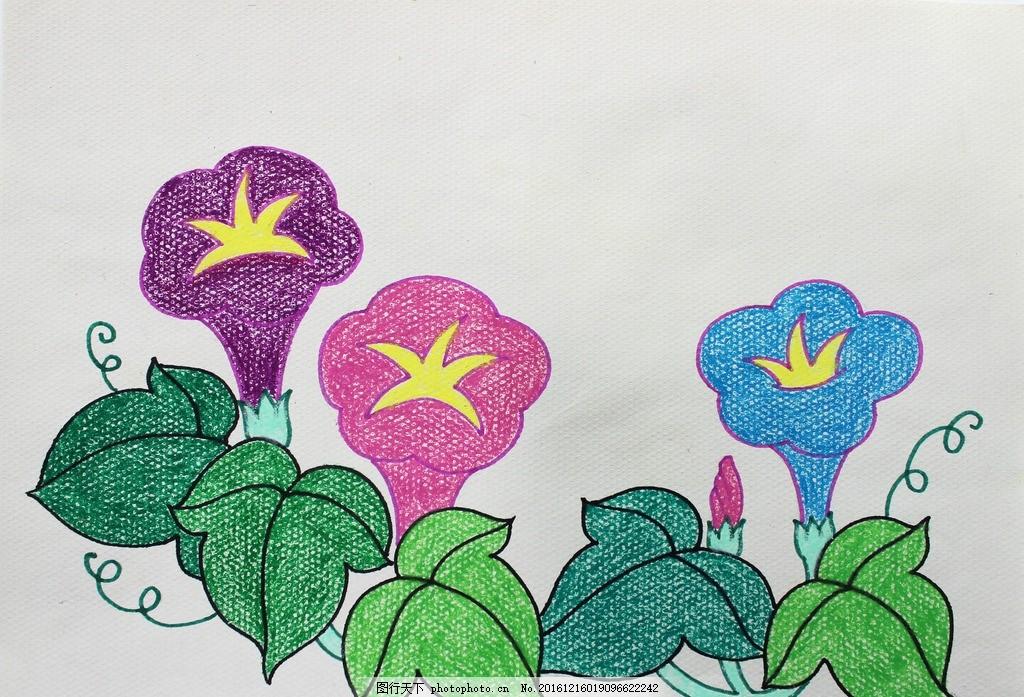 蜡笔画 美术 绘画 儿童绘画 手绘 儿童画 牵牛花 书法绘画类