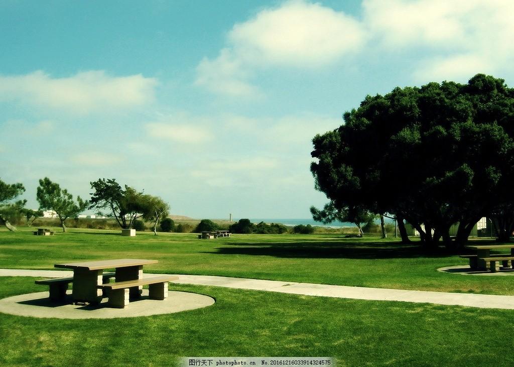 春天风景 春天风景图 水面 樱花 垂柳 树木 天空 自然风景 摄影