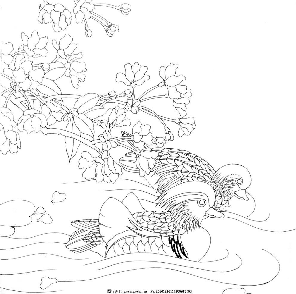 鸳鸯 美术 鸳鸯戏水 手绘 素描 黑白 绘画 白描 绘画素材 广告设计