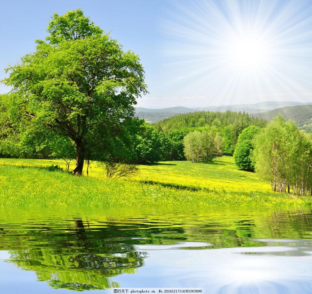 春天自然风景图片图片