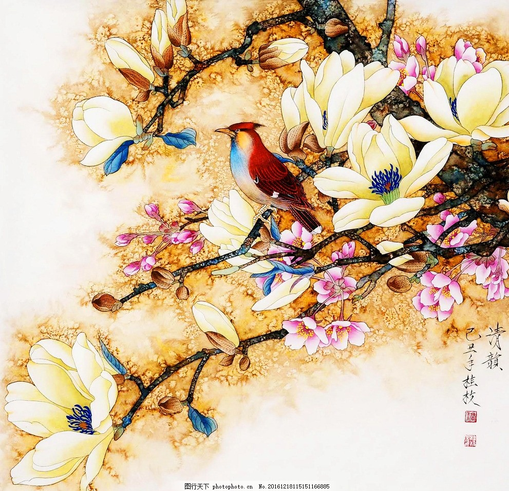 工笔玉兰花鸟 绘画 国画 工笔 工笔画 玉兰 小鸟 花鸟画 艺术绘画