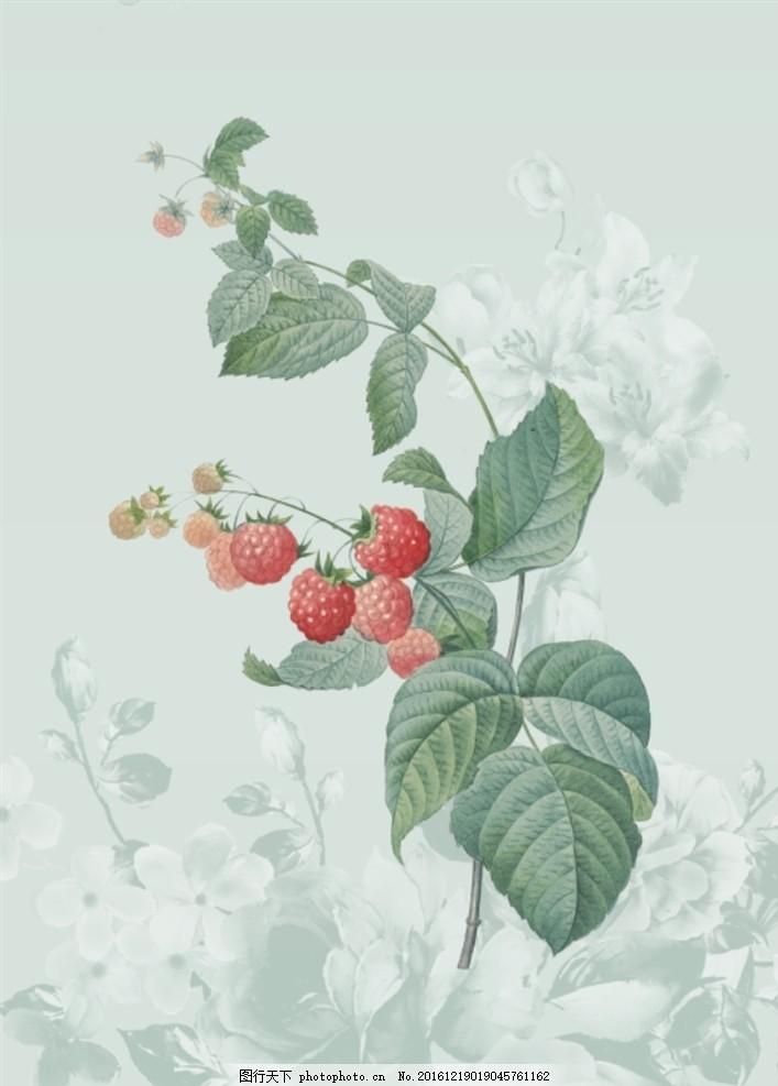 植物 花卉 手绘花卉 设计素材 文化墙 名片设计 封面设计 古典花卉