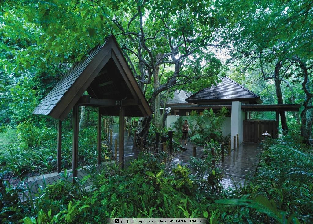 度假酒店 度假村 休闲度假 度假天堂 蜜月度假 热带风情 雅奴卡岛