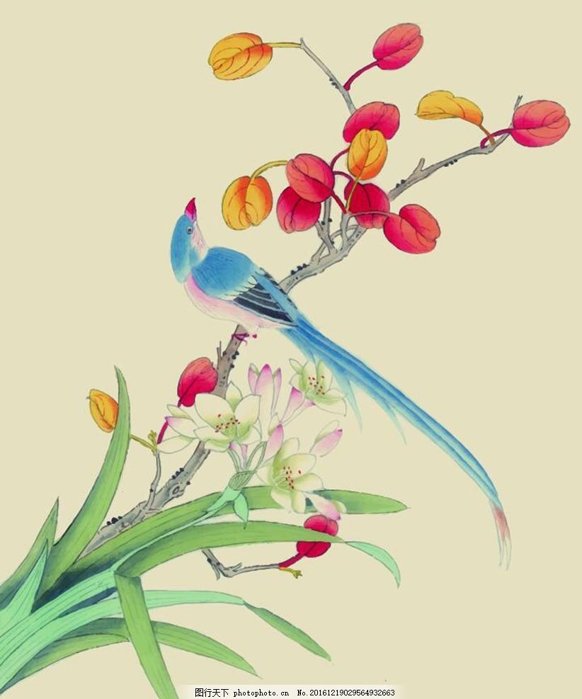 中国风水彩花鸟