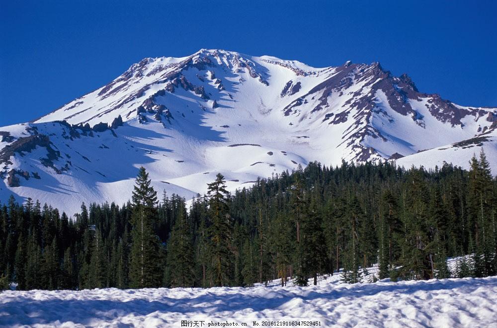 雪山风景图片素材 自然风光 美丽 自然 雪山 雪地 松树 雪花 山水风景