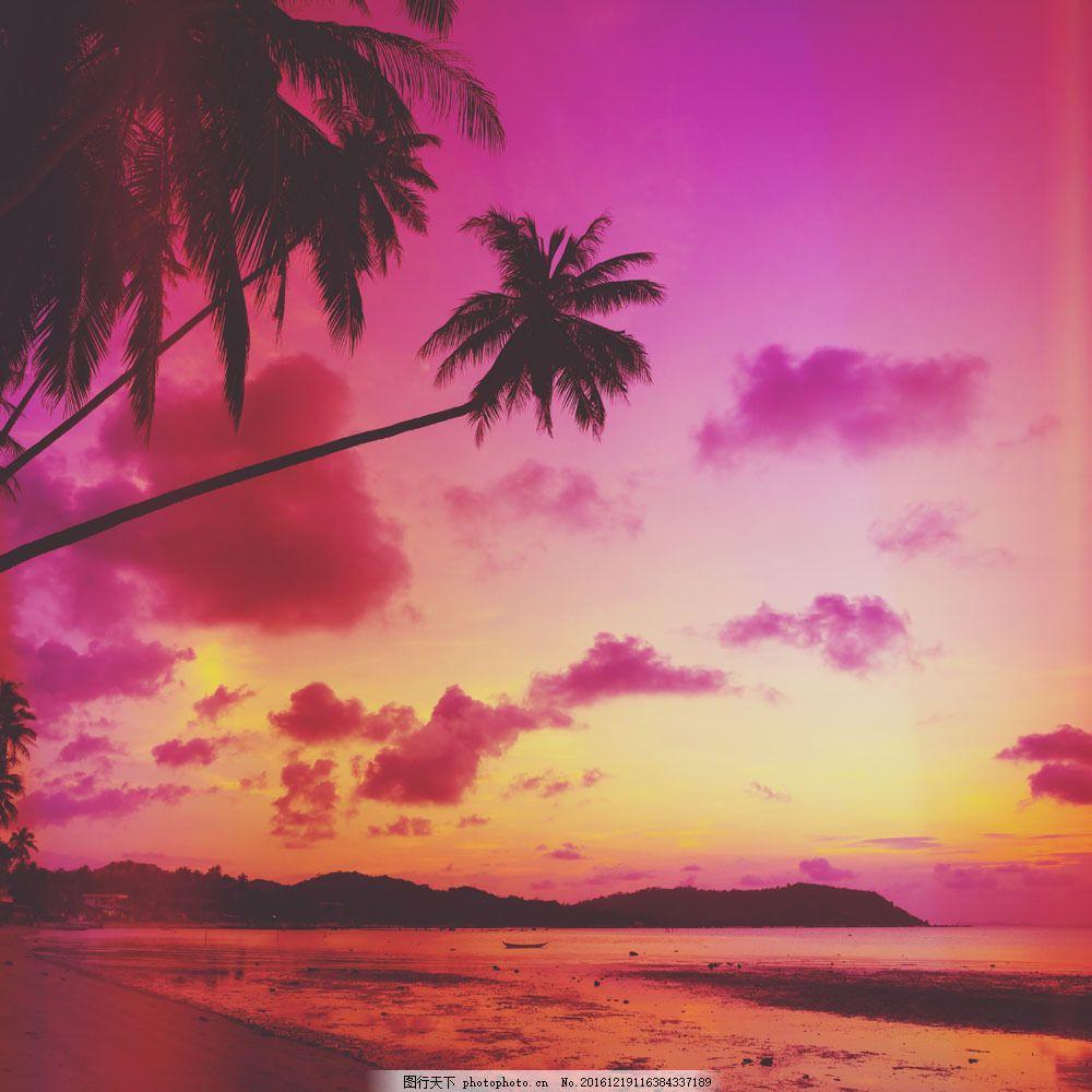 海洋椰子树晚霞风景图片