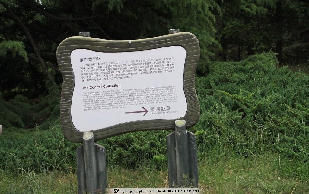 景色 公园 树木 花草 景区指示牌 风光建筑 摄影 自然景观 自然风景