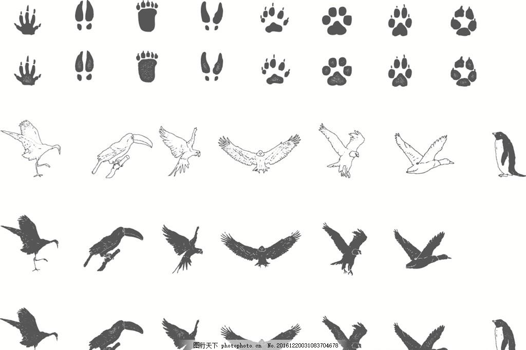 动物脚印剪影飞翔动物