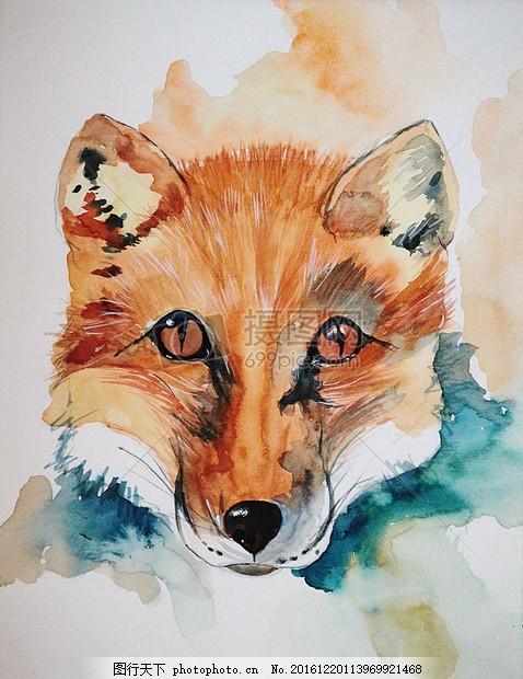 漂亮的水彩画 福克斯 动物 图像 绘画 艺术 绘图 动物区系 红狐狸狐狸
