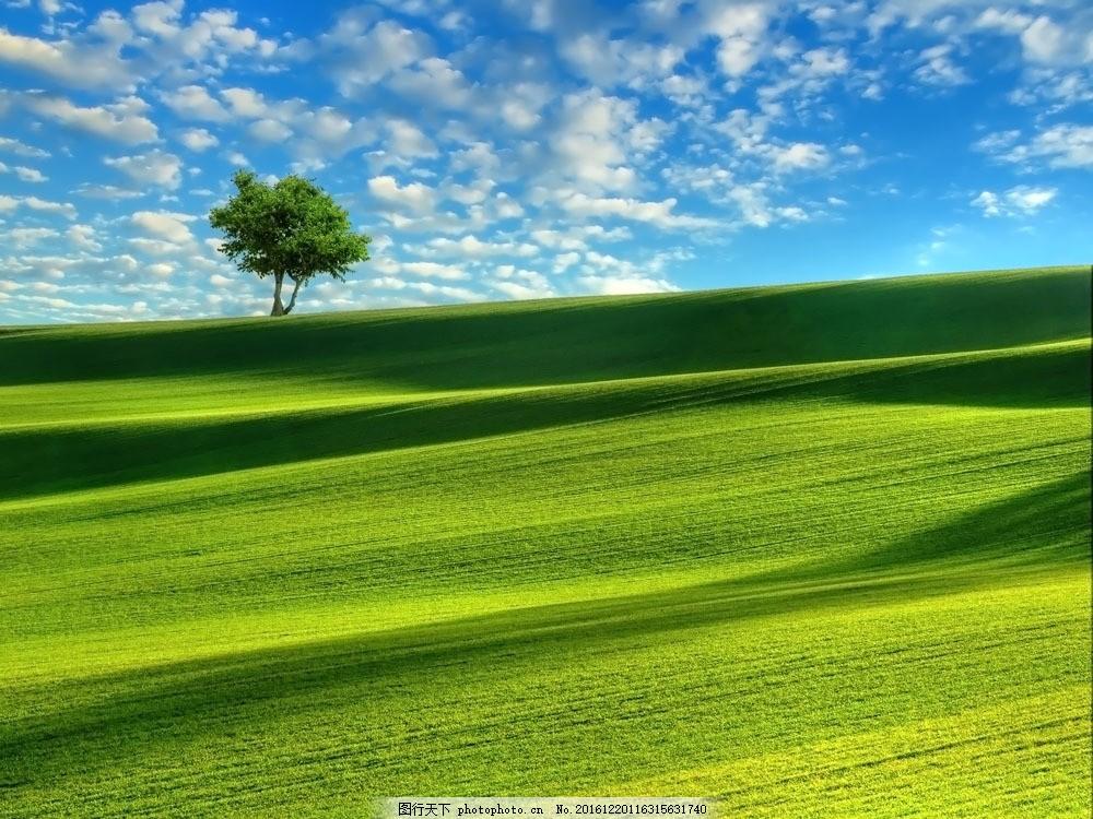 蓝天白云 草地 绿地 草原风景 美丽风景 蓝天白云 风景图片 图片素材