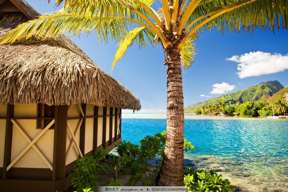 海边的风景图片素材 房子 椰子树 大海 海水 风景 自然 风景名胜 风景