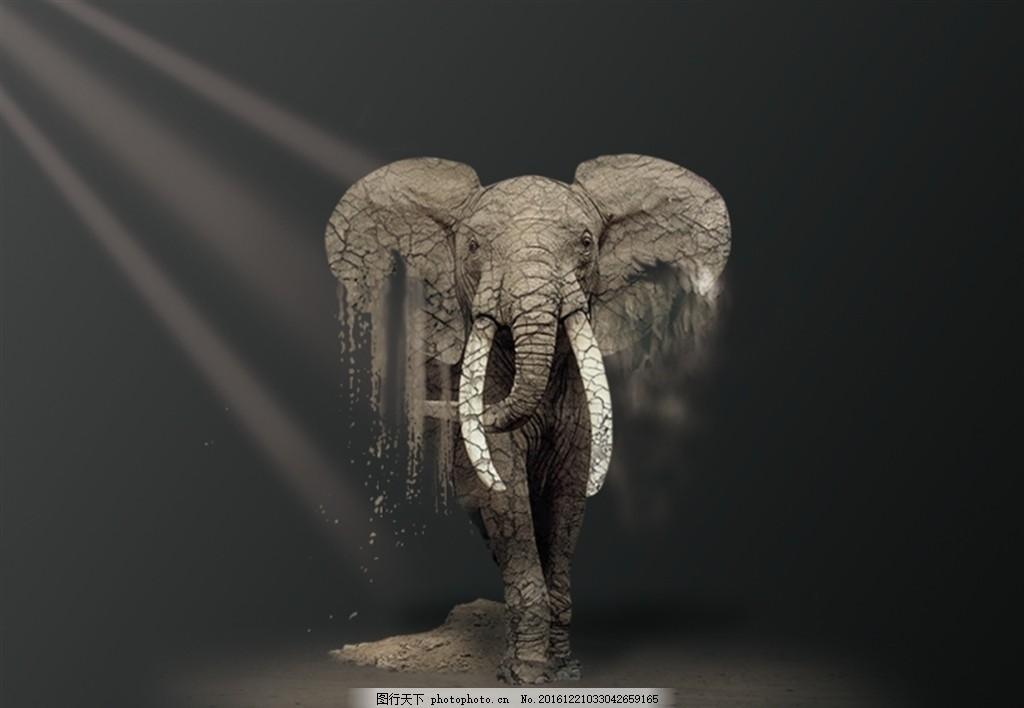 消失的大象 环境保护 海报 沙化动物