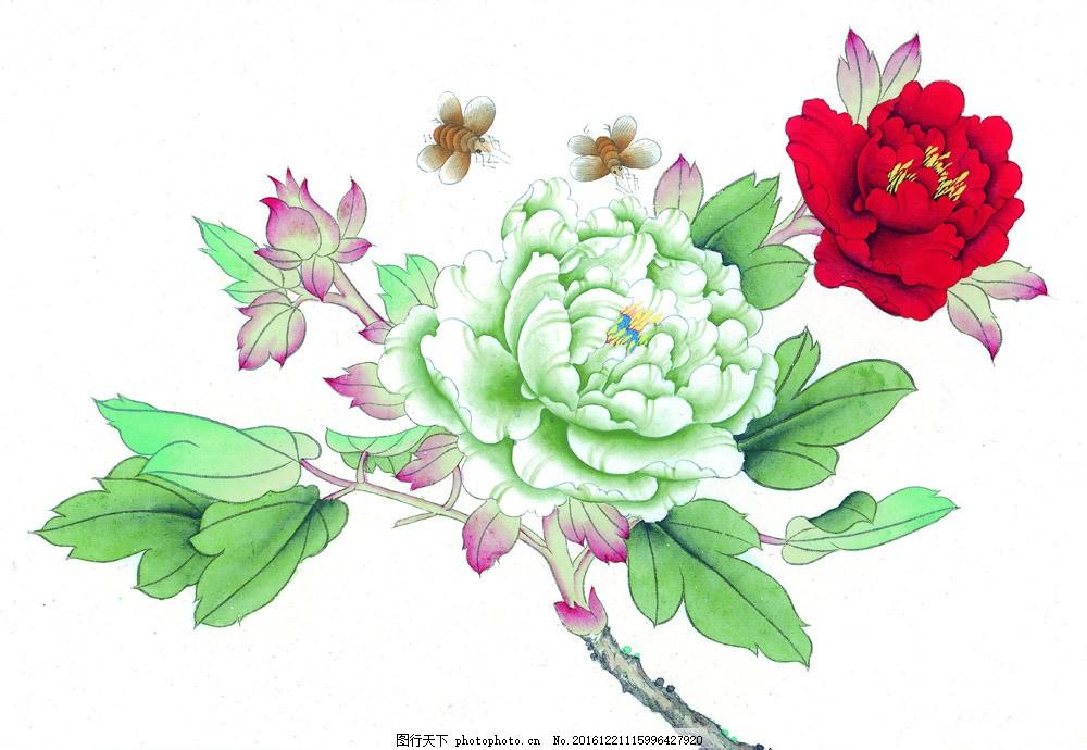 牡丹花插画 牡丹花插画图片素材 国画 油画 装饰画 无框画 手绘