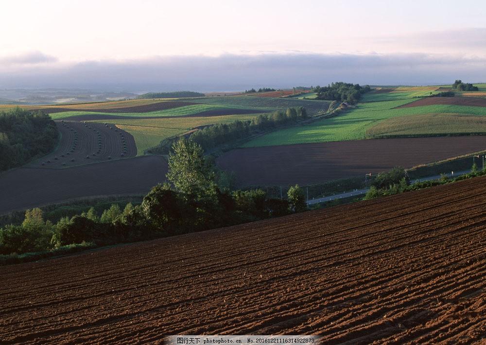 农村田园风景摄影图片素材 四季风景 美丽风景 美景 自然景色 树木