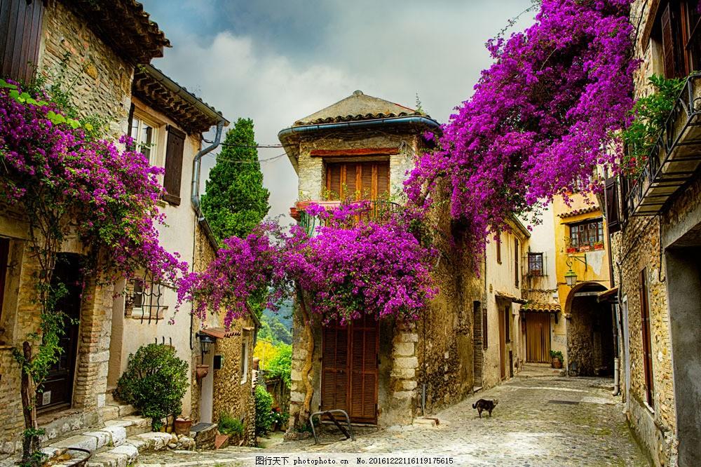 欧式古老小镇 欧式小镇建筑 城市建筑 街道 城市风景 房屋建筑 鲜花满