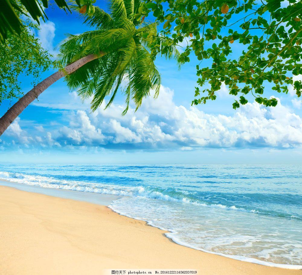 椰树 沙滩风景 海滩风景 海浪 海面风景 大海风景 美丽风景 山水风景