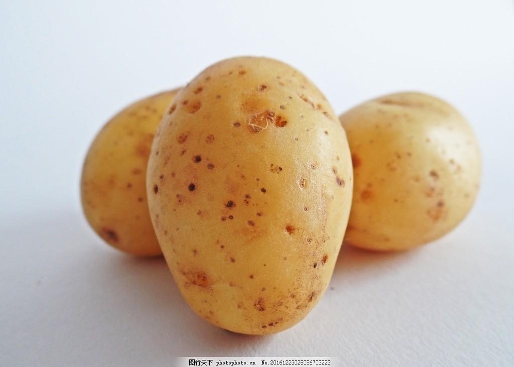 马铃薯简笔画