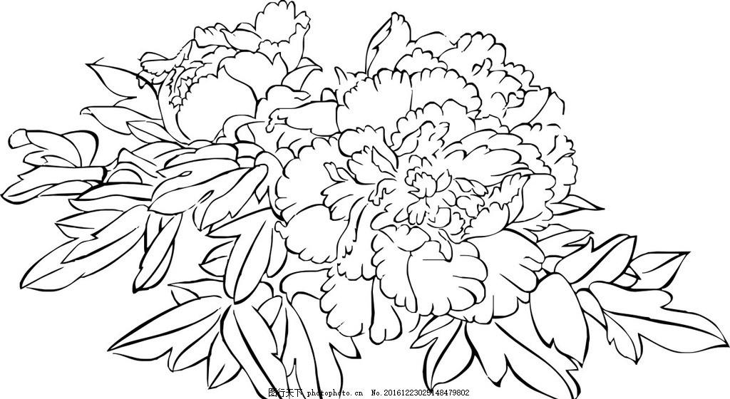 花卉 玫瑰 矢量图 黑白 手绘 花朵 动植物