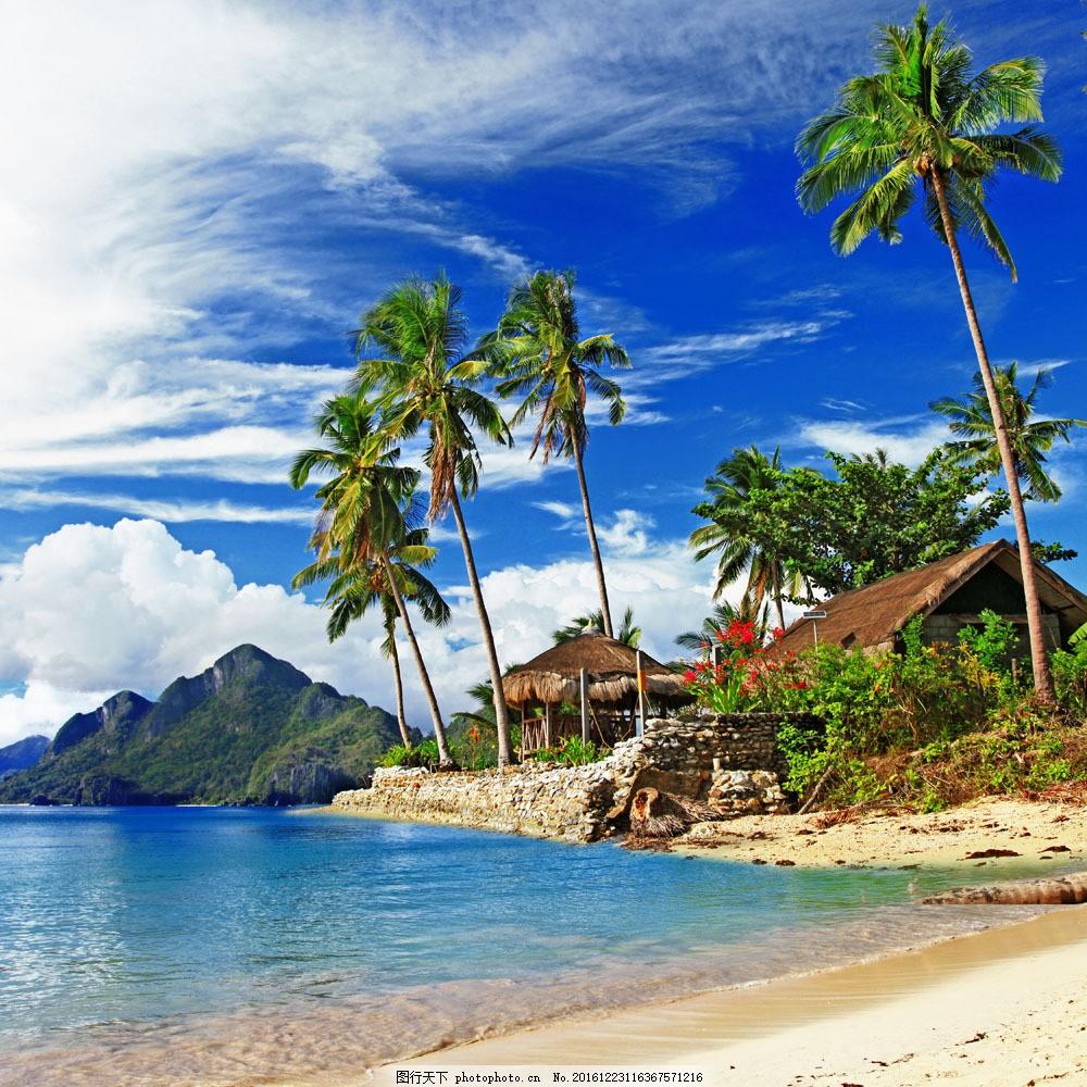 美丽海滩椰树风景图片素材 海滩风景 椰树 沙滩风景 美丽海岸风景