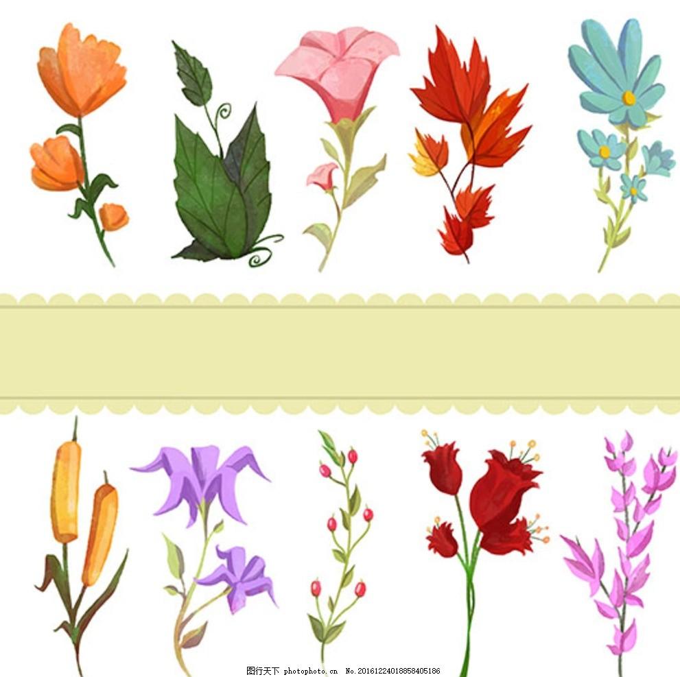 手绘花 大红花 鲜艳红花 鲜花 美丽花朵 花卉 花纹花边 春天故事 手绘